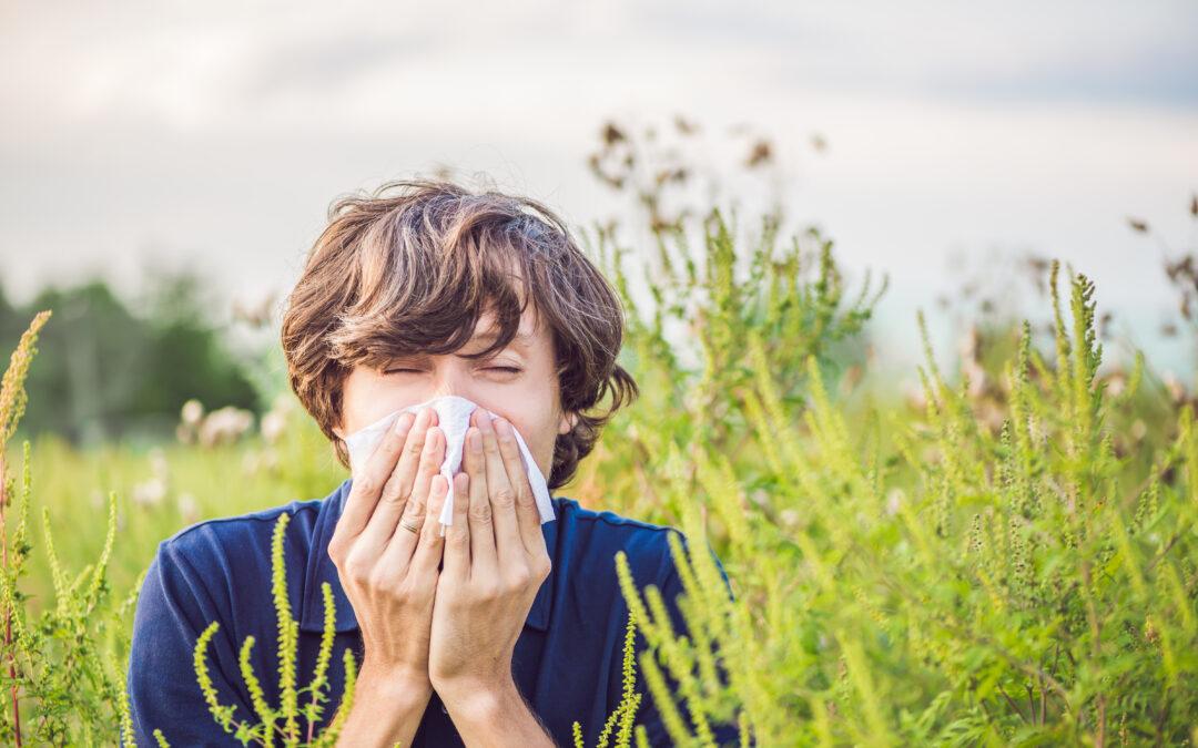 Allergisk konjunktivit